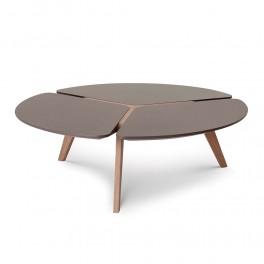 Blossom Coffee Table