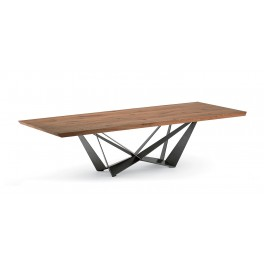 Skorpio Wood Table